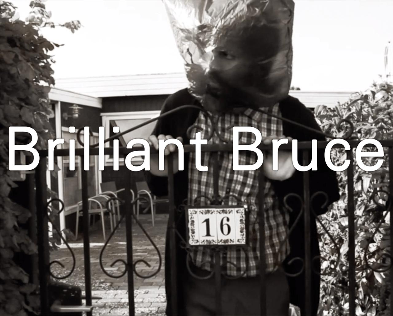 Brilliant Bruce